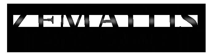 logo Zemaitis Guitars