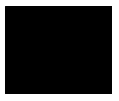 logo 660 Guitars