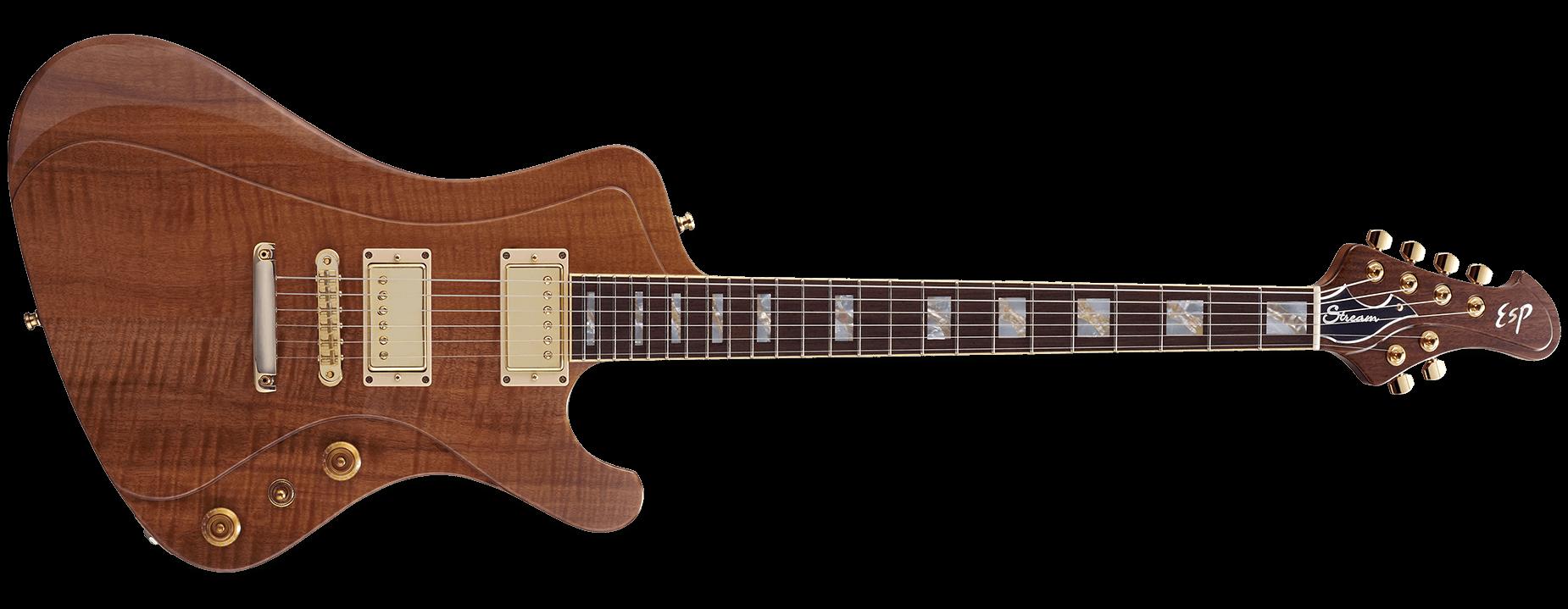 ESP Stream GT Custom