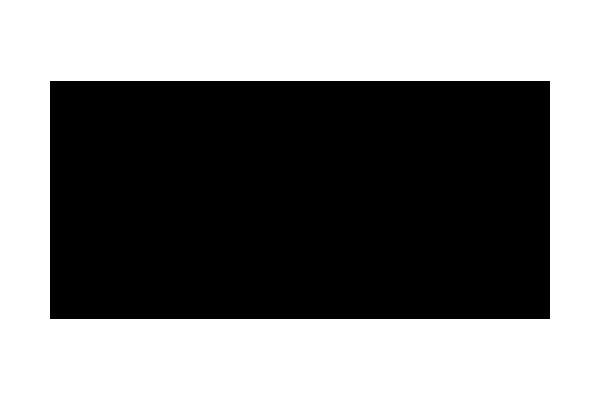 logo Rivolta Guitars
